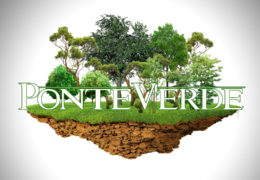 "PonteVerde 2020 –  ""Evolucion da superficie forestal"""